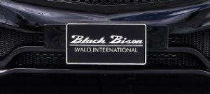 画像1: WALD ユーロプレートベース 【ベンツ A-Class W176  2013y〜 Mercedes Benz】 ブラックバイソンエデイション Sports Line Black Bison Editon エアロパーツ